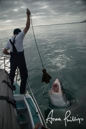 Still photos of marine science in action