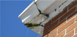 Leaking Gutter Joints