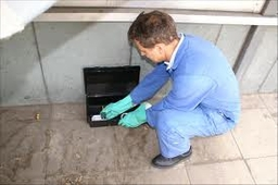 Insect Pest Controller Ware 1 AM-PM Pest Control 15 Whiteley Close, Dane End, Ware, Hertfordshire SG12 0NB 01920 438719  http://www.am-pmpestcontrol.co.uk geotagged geo:lat=51.875880 geo:lon=-0.063105