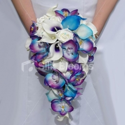 Galaxy Blue Dyed Orchid Cascading Bridal Bouquet with Vermeer Lilies