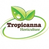 Tropicanna Horticulture Ltd