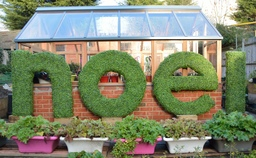 hedgedin artificial boxwood hedge lettering