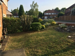 Garden tidy up and cut
