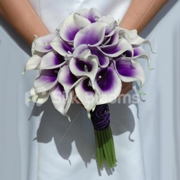Purple Picasso Calla Lily Wedding Bouquet