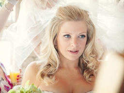 Wedding Photograph or Bride in Wedding Dress