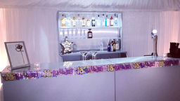 10ft Bar with back bar and light