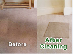 For all your professional carpet and upholstery cleaning call: 0800 999 3833. (Option 1)