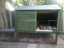 One of our big rabbit hutches...