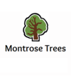 Montrose Trees Ltd