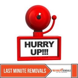 Last Minute Removals