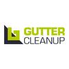 Gutter Cleanup