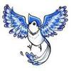 Bluejay Business Services Ltd