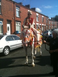Our Indian Wedding Horse in Yorkshire