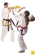 Martial Arts Board Break Lynx Retford Doncaster