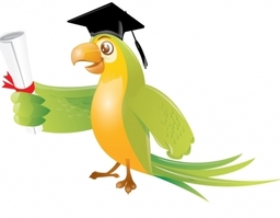 Parrot Character C