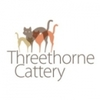 Threehorne Boarding Cattery