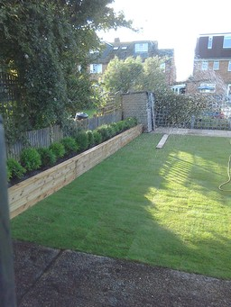 Turf and raised bed