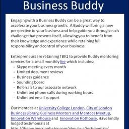 Flyer Business Buddy
