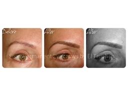 3D Hairstroke Semi Permanent Eyebrows By El Truchan CPCP @ Perfect Definition