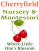 Cherryfield Day Nursery and Montessori Centre