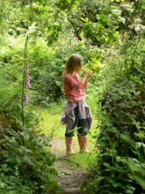woodland walks from site