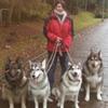 Top Dog Falkirk