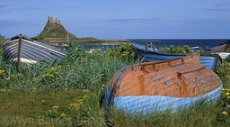 0017 Boats On Lindisfarne