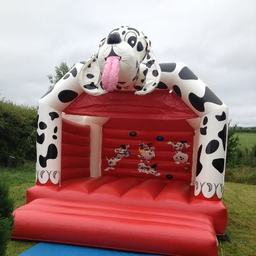 Doggy bouncy castle for hire Comber