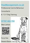 Paw Management Trainers & Behaviourists