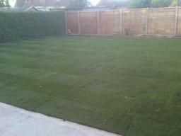 Freshly turfed lawn