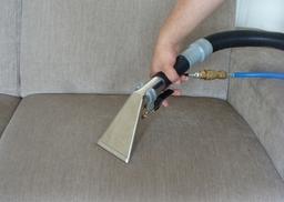 Sofa Cleaners