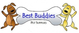 Best Buddies Banner