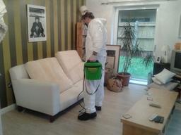 Pest control service - London