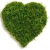 Greenheart Gardening Services