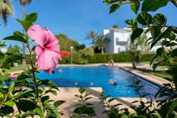 Mediterranean Garden and Pool