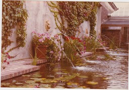 Italianate water garden