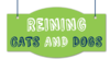 Reining Cats and Dogs