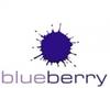 Blueberry Bathrooms & Kitchens