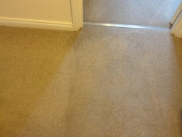 Carpet cleaning SW7