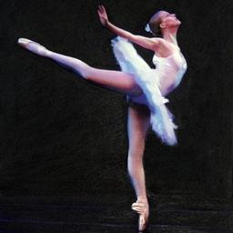 Darren Baker Ballet Swan