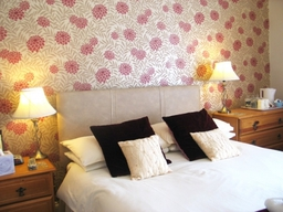 Standard Double en-suite Room, excellent value for money accommodation in Torquay