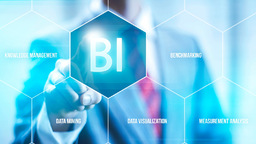 Business Intelligence Reports BI Consultants