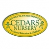 The Cedars Nursery