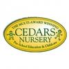 The Cedars Nursery