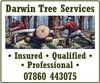 Darwin Tree Services