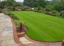 A newly laid lawn