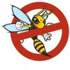 Stansted Pest Control Solutions