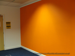 Office feature wall painted