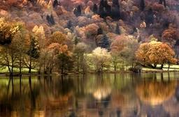 0088 Shades Of Autumn 4