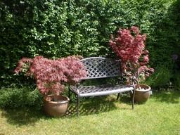 Jasmine Metal Garden Bench